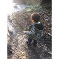 Aston on a muddy walk!