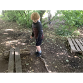 We practised our balancing skills in forest school