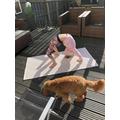 ...practising her gymnastics...