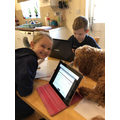 Summer's dog has been helping with home learning.