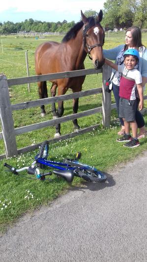 Ruben met a lovely horse.