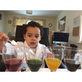 Aston busy doing experiments!