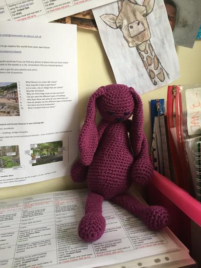 Emma the rabbit - not looking very happy!