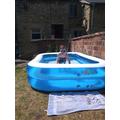 Looks like a brilliant pool!