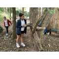 Forest school: building with logs.