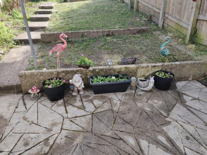 Laurie has been helping in the garden...