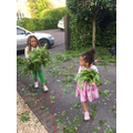 Destiny and Harmony tidying up leaves
