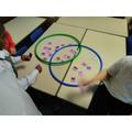 Our venn diagrams of animals