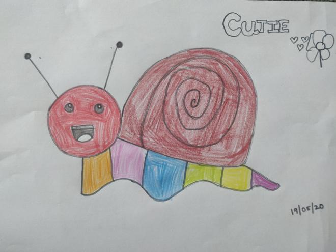 Manvita's pet snail 'Cutie'.