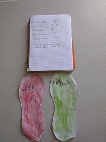 Larayah's measuring results.
