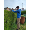 Phil engaged in some topiary!