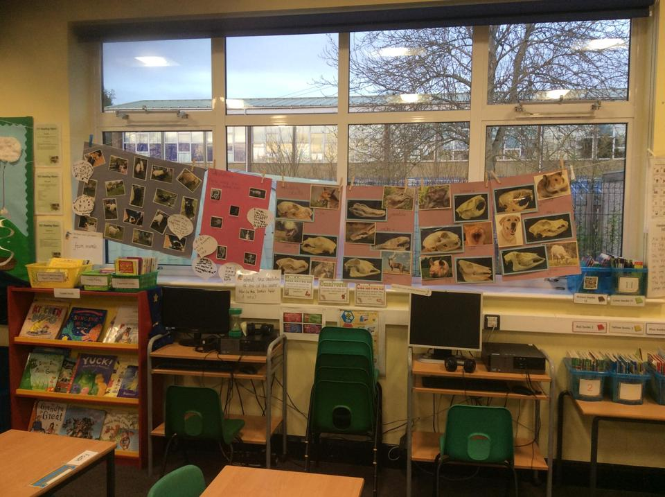 Topic and Science display