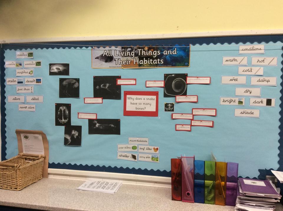 Science Display