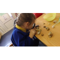 We looked at shells with magnifying glasses.