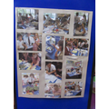 Year 5's science explorations