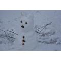 Our snow bear