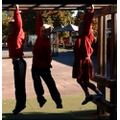 We love our Monkey Bars!