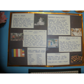 Year 4 - Non-chronological reports.