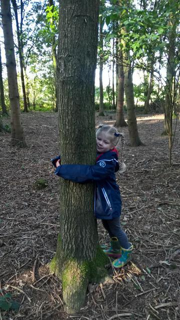 Meeting my tree