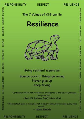 Resilience in Year 2