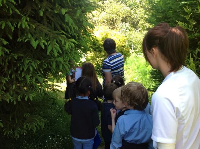 On the wild flower trail through the garden.