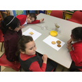 We sorted biscuits different ways. By shape...