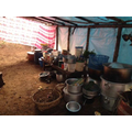 Sanogumela school's kitchen after the earthquake