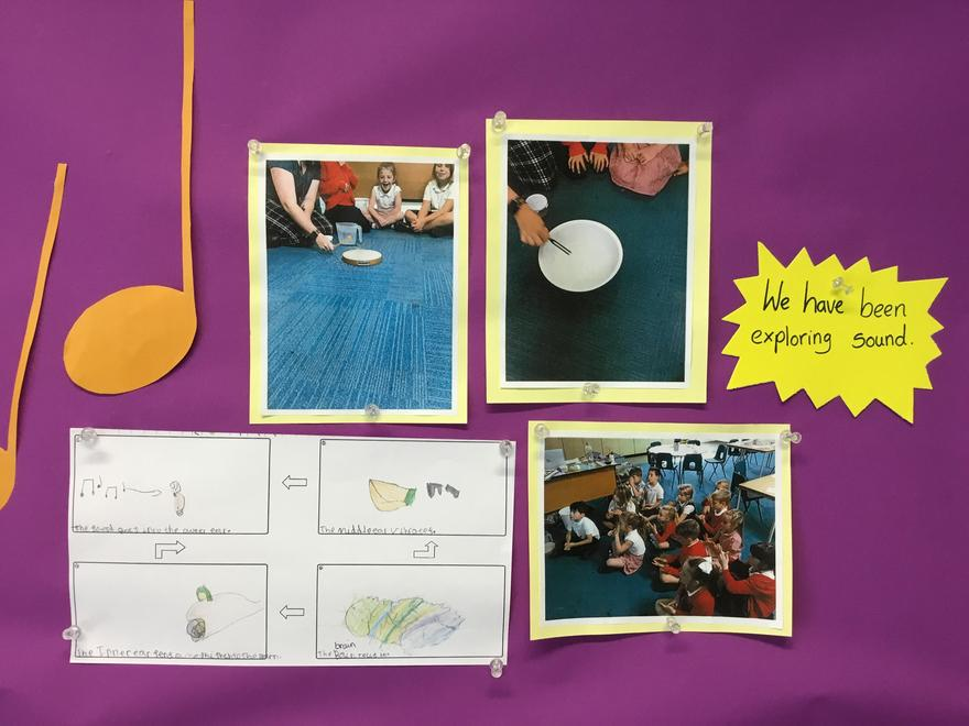 13/9/21 We learnt about how we hear and the parts of the ear.