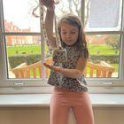 Bird feeder for RSPB birdwatch week