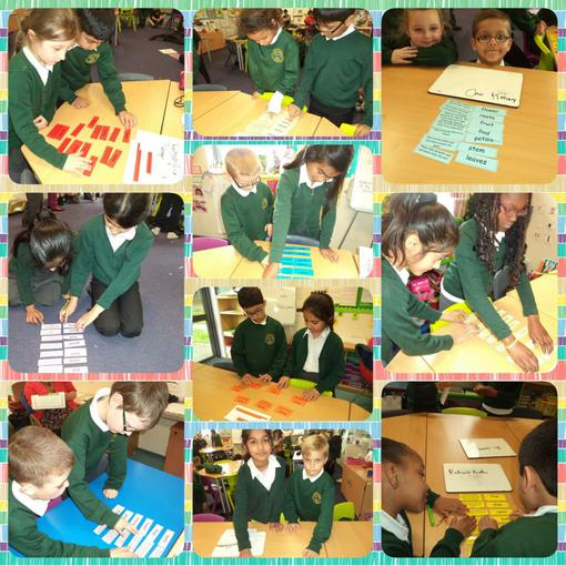 Games help us to use and spell science words well.
