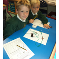 Year 3 scientists do predictions before testing