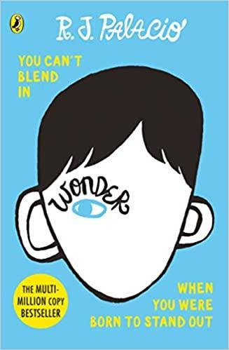 Wonder - our Guided Reading book