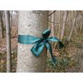 A Degg's Wood boundary bow