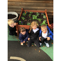 Great gardening!