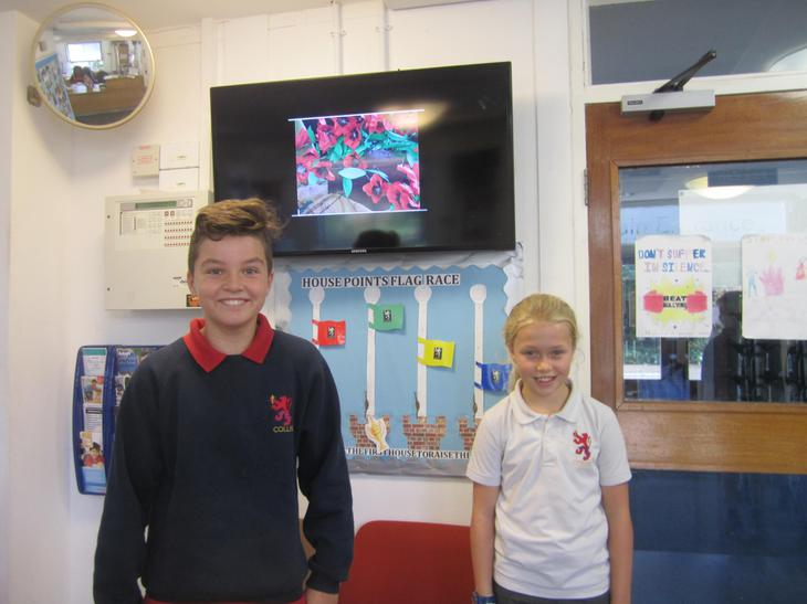 Ruby House Captains