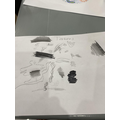 Great sketching work Evie E.