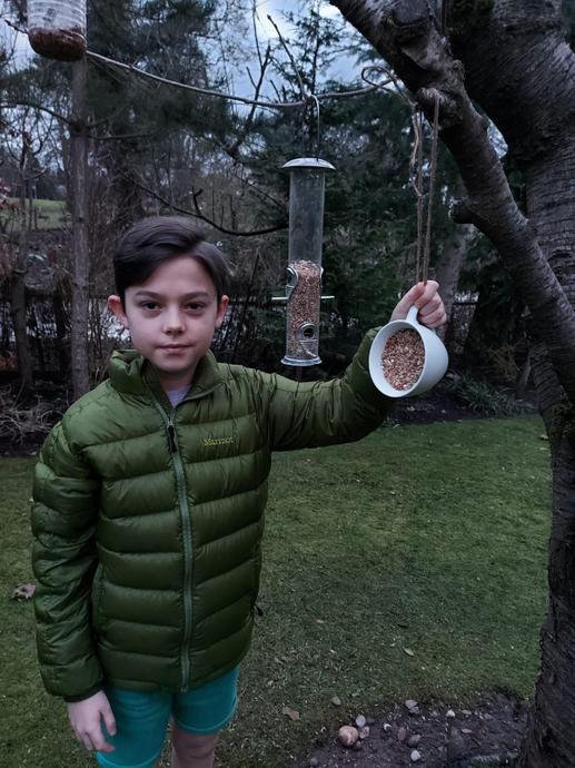 Great use of a teacup as a bird feeder