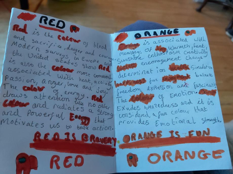 Evie T made a colourful Zine.