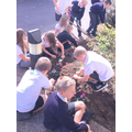 School maintenance and bulb planting