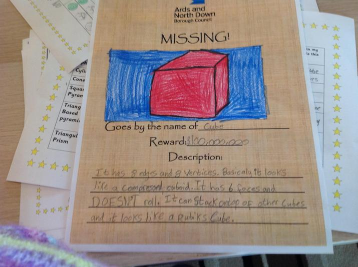 Emily (P5B) made a poster about a cube
