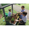 KS1 Eco warriors brightening up the planter