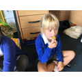 Trying school grown sweetcorn