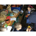 Collaborating for pumpkin planting