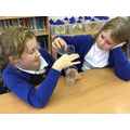 We examined how particles in a liquid move.