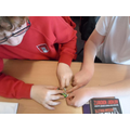 Investigating make a lamp light using a piece of foil, a cell and a lamp.