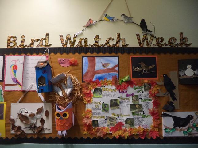 Bird Watch Week 2020