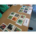 Classifying animals in Science