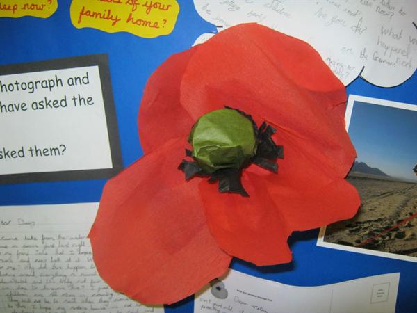 Our wonderful tissue paper poppies