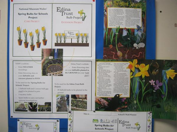 Edwina Trust Bulb Project with Miss Codd