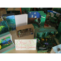 Y3 Rainforest Dioramas